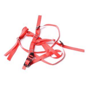 cinturon-anti-deslizante-para-neumatico-de-repuesto-varios-colores