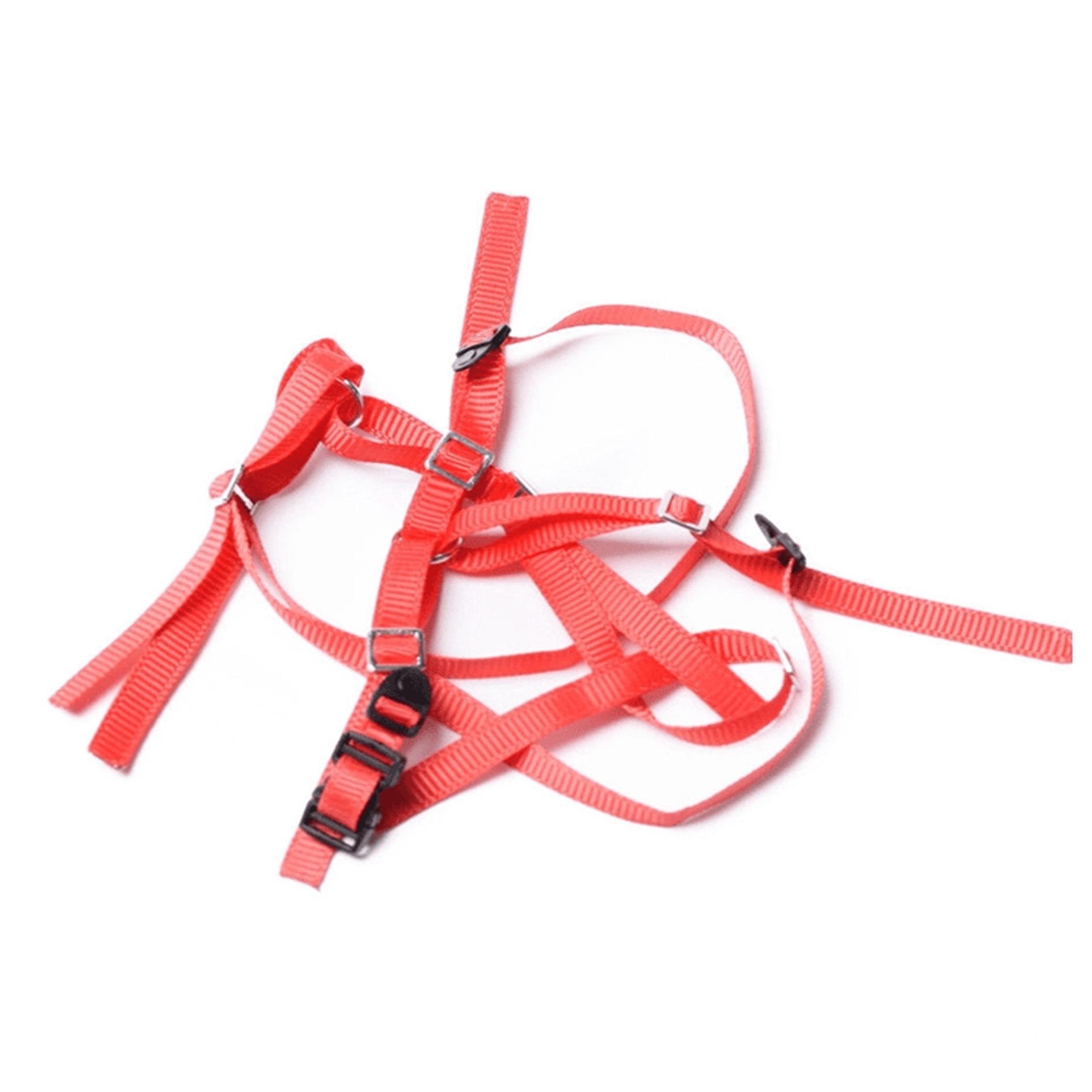 Cinturón anti-deslizante para neumático de repuesto (Varios Colores)